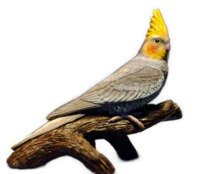 lifesize Cockatiel bird sculpture