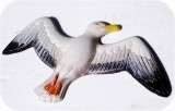 Sea Gull Flyby 15X24 in. , birds, bird, sculpture, statue, art