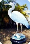 20-1-great-blue-heron-left, Great Blue Heron Lifesize, birds, herons, sculpture, statue, art