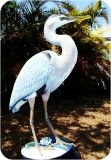 Great Blue Heron Lifesize, birds, herons, sculpture, statue, art