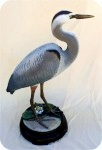 20-1_Great_Blue_Heron-13, Great Blue Heron Lifesize, birds, herons, sculpture, statue, art
