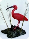 Scarlet Ibis 11x12 in. , birds, ibis, sculpture, statue, art