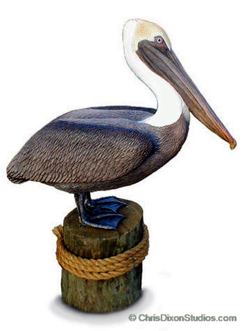 Lifesize Brown Pelican limited edition sculpture