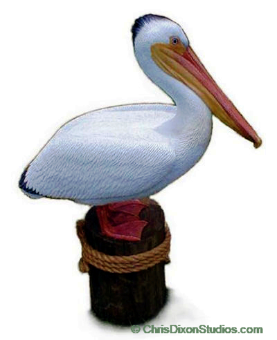 1.3b Lifesize White Pelican sculpture limited edition artwork