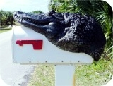 Alligator8Ft Mailbox Head, reptiles, alligator-mailbox, sculpture, statue, art