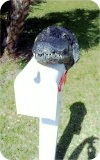 Alligator8ft-MAILBOX-Head-97, Alligator8Ft Mailbox Head, reptiles, alligator-mailbox, sculpture, statue, art