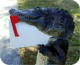 Alligator8ft-MAILBOX-PARCEL-78, Alligator 8Ft CM Mailbox Parcel, reptiles, alligator-mailbox, sculpture, statue, art