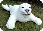 Life size harp seal statue