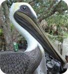 Ponsiena Elementary School pelican mascot. Key West, FL, USA made in USA