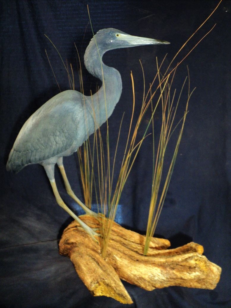 Best Artist Heron Sculptures and Pelican Art Sculptures Water Birds 3  QX48